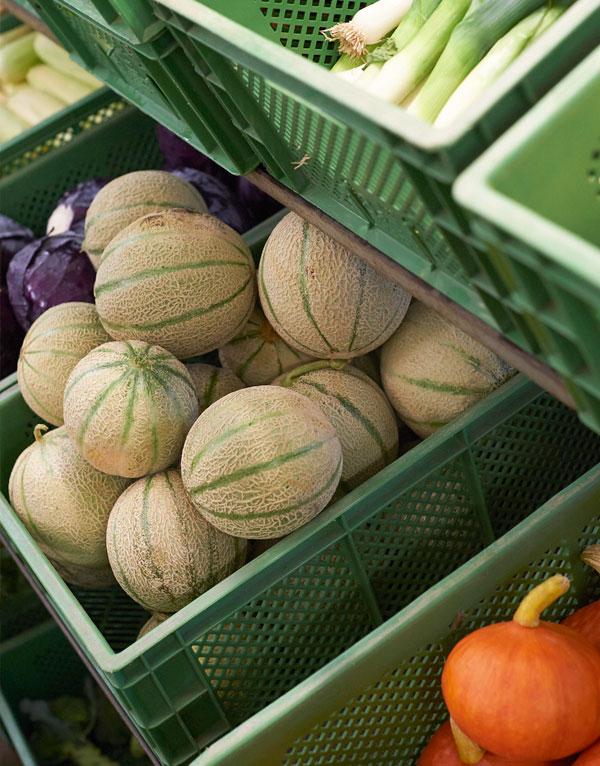 Regionales Bio-Gemüse liefern lassen