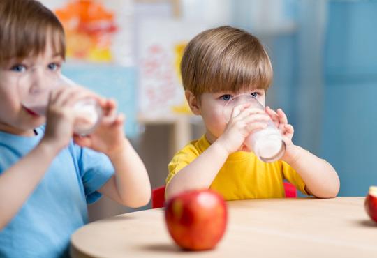 Schulfrucht & Schulmilch (EU-Schulprogramm)